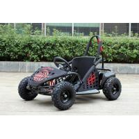 Buy cheap 35km/H Two Person Go Kart Buggy , 1000w Kids Off Road Go Kart EPA Approved from wholesalers