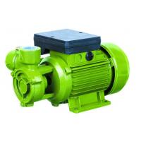 Wholesale Electric Water Pumps For Houses , Vortex Water Pump For Hotel Using 0.75HP from china suppliers