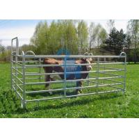 Wholesale Galvanised Portable Livestock Fence Panels , Steel Tube  Horse Fence Panels For Dairy Farm from china suppliers