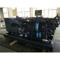 Wholesale 250 KW Comap Controller Blue Marine Diesel Generator With Shock Absorber from china suppliers