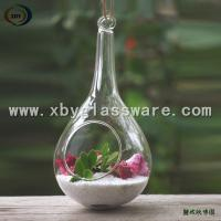 Wholesale Haning Glass Plant Ornament from china suppliers