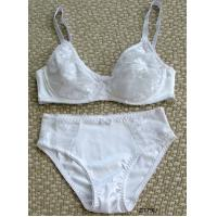 Wholesale ladies bra set from china suppliers