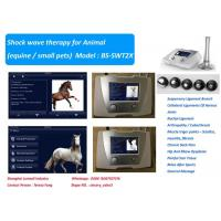 Quality 190 MJ High Energy Veterinary Shock Therapy Machine For Horse And Small Pets for sale