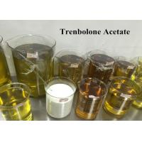 Wholesale 99% Trenbolone Steroid Muscle Gain Tren Ace For Injection , CAS 10161-34-9 from china suppliers