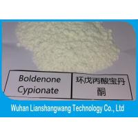 Wholesale Pharmaceutical Grade Boldenone Steroid powder Boldenone Cypionate CAS 106505-90-2 from china suppliers