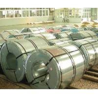 Wholesale CS Type A Electro Galvanized Steel Coil , Cold Rolled Steel Plate from china suppliers
