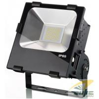 China 230V IP65 COB Cool White High Lumens 100 Watt LED Flood Light Replacing 250W HPS on sale