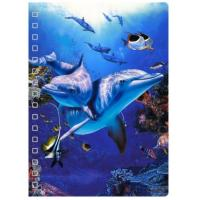 Wholesale 45 Sheets 3D PET Cover Lenticular Spiral A5 Notebook With UV Printing from china suppliers