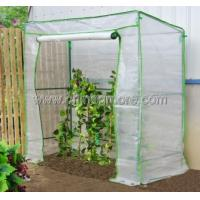 Wholesale Steel Tube Greenhouse-Tomato Series-198X78X200CM-PE from china suppliers