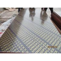 Wholesale UNOPLEX  BRAND FILM FACED PLYWOOD., building construction plywood.form work.made in china. from china suppliers