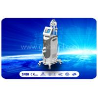 Wholesale Vertical Fat Freezing Beauty Machine Cryolipolysis For Body Shaping from china suppliers