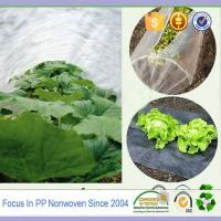 Wholesale UV-resistant agriculture used pp spunbond nonwoven fabric from china suppliers