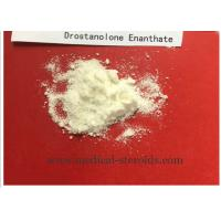 Wholesale Masteron / Drostanolone Enanthate Raw Steroid Powders for Muscle bodyBuilding from china suppliers