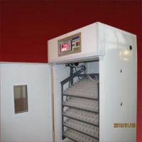 Wholesale egg incubator 528 gold from china suppliers