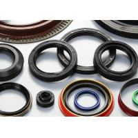 Wholesale James Walker Fs Casing Tubing Seal for Oil and  Gas/Seal Kit Hitachi Ex200-1 Boom from china suppliers