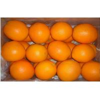 Wholesale Fresh Fruit Raw Citrus Junos Fresh Navel Orange Contains Sugars , Dietary Fibre,average individual fruit weight 300~350g from china suppliers
