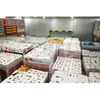 Quality Low Temperature Big Cold Room Project Cheese Frozen Food Storage Cold Room Freezer for sale