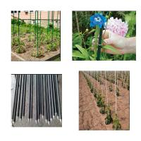 Wholesale Pultrusion Fiberglass Plastic GRP Nursery Stakes , FRP Tree Stakes / Garden Stakes from china suppliers