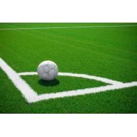 Wholesale Olive monofilament Synthetic Soccer Grass for football from china suppliers