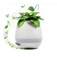 Quality Music Illuminated Flower Pots With LED Light And Bluetooth For Christmas Gift for sale