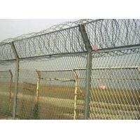 Wholesale SS Protecting Mesh Fence Security Wire Anti Climb For Gardens / Apartments from china suppliers