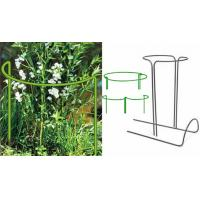 Half round plant supports in round shape or chain shape support flowers