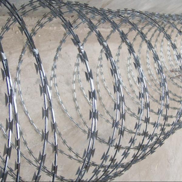 Razor type barbed wire of item