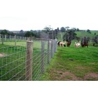 Wholesale 150mm , 300mm Hole Galvanized Farm Field Fence / Farm Fence Used For Farmyard from china suppliers