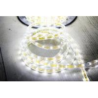 Wholesale SMD LED Square Rope Light-High Voltage 220V (HVSMD-3528-60) from china suppliers