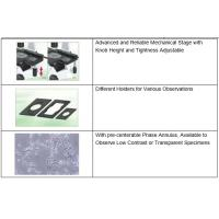 Wholesale Inverted Biological Microscope With High-point Extra Wide Field Eyepiece EW10× 22 from china suppliers