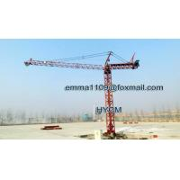 Wholesale Mini 700kg Load Inner Climbing Tower Crane 9mts Jib Length CIF Brazil from china suppliers