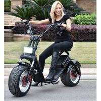 Quality EEC/CE/Rohs Certification 1000W 25km/h Two Wheel Electric Scooter Ebike for Adult for sale