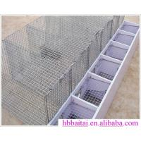 Wholesale rabbit  dog metal cage from china suppliers
