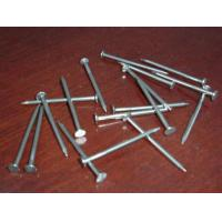 Wholesale Polished Common Nail / Wire Nail from china suppliers