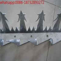Wholesale Anti climb spikes/ss/galvanized/pvc wall spike factory/wall security spikes/fence security spikes/security spikes from china suppliers