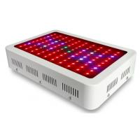 Buy cheap Plant Grow Light from wholesalers