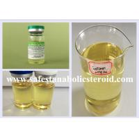 Wholesale Bodybuilding Injectable Anabolic Steroids Liquid Testosterone Blend Sustanon 250mg/ml from china suppliers