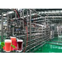 China Highly Automation Fruit Processing Line Beverage Production Line 20T / Day Capacity on sale