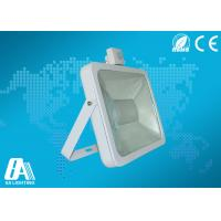 Quality White 100W COB Led Flood Light Motion Sensor High Lumen 90lm / w With CE for sale