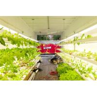 Wholesale Hydroponic Farming Prefab Container Homes , Movable Modular Container Homes from china suppliers