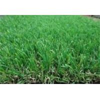 Wholesale Soft Artificial Grass from china suppliers
