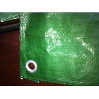 Wholesale PE tarpaulin sheet HDPE Tarps green poly tarps coated canvas from china suppliers