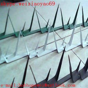 Wholesale wall spike ,fence spike ,fence spikes/fence and wall spikes/security spikes/anti climb spikes/fence security spikes from china suppliers