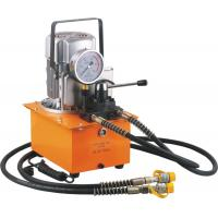 Wholesale Manual pressure holding Double action electric oil pump from china suppliers