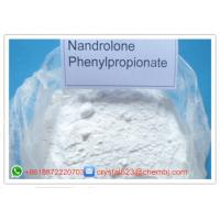 Wholesale Raw Powder Nandrolone DECA Durabolin Nandrolone Phenylpropionate  62-90-8 from china suppliers