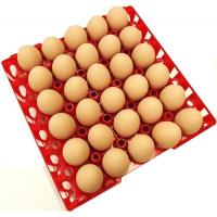 Buy cheap Egg tray with 30 holes PP plastic material and different color QL401 from wholesalers