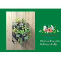 Wholesale Indoor Hanging Flower Baskets , Versatile Wall Hanging Baskets from china suppliers