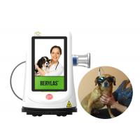 Wholesale GaAlAs Diode Laser Treatment Machine , Laser Therapy For Arthritis In Dogs from china suppliers