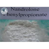 Wholesale Nandrolone 17-propionate male muscle CAS No 434-22-0 White crystalline powder from china suppliers