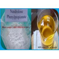 Wholesale White Crystalline Powder Nandrolone Steroid Nandrolone Phenylpropionate 62-90-8 from china suppliers